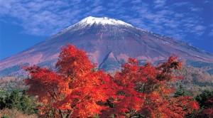 Du lịch nhật bản mùa lá đỏ 7 ngày