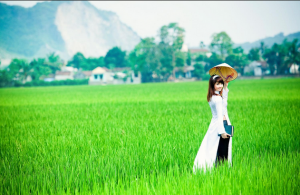 Việt Nam và Hội An