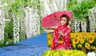 Du lịch Nhật 05 ngày thiên đường hoa