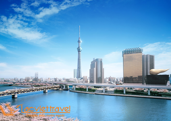 tokyoskytree_2 copy
