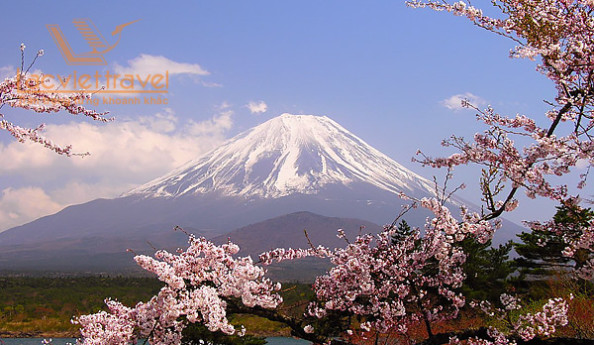 Tham quan Núi Phú Sĩ
