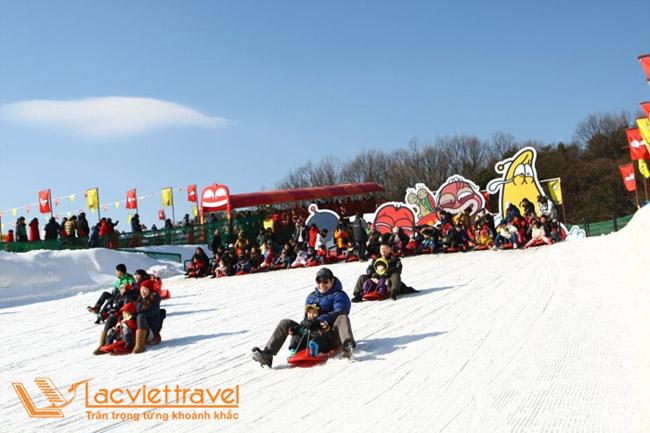 Trượt tuyết Seoul Land - Du Lịch Hàn Quốc