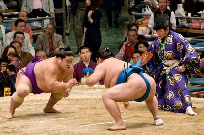 Hé lộ bất ngờ về lễ hội Sumo trong chuyến du lịch Nhật Bản tháng 9