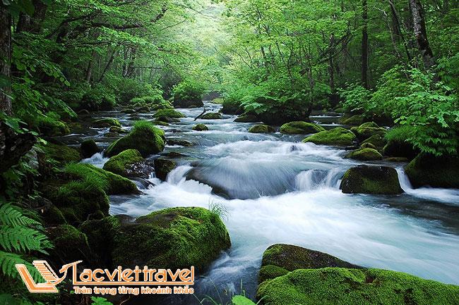 Suối Oirise – điểm du lịch Nhật Bản thơ mộng và bình yên!