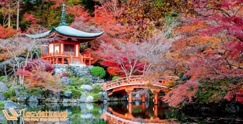 kinh nghiệm du lịch Nhật Bản mùa thu