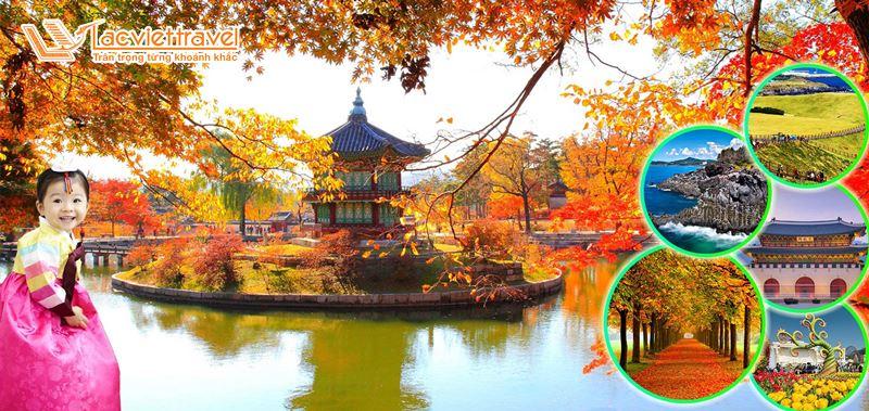 5 lý do nên đi du lịch Hàn Quốc mùa thu
